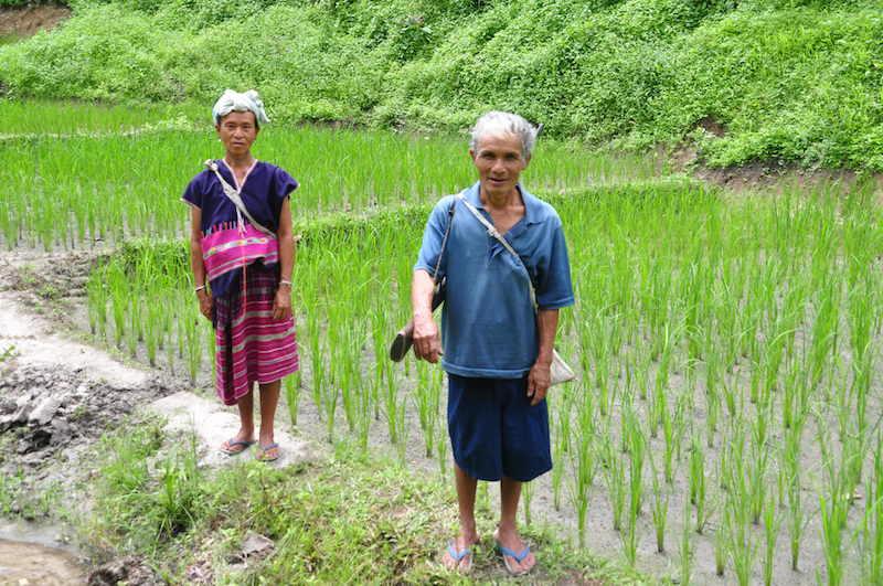 Karen hill tribe, Samoeng